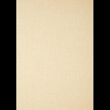Papel Pintado con estilo Flores modelo ROSETO de la marca Designers Guild