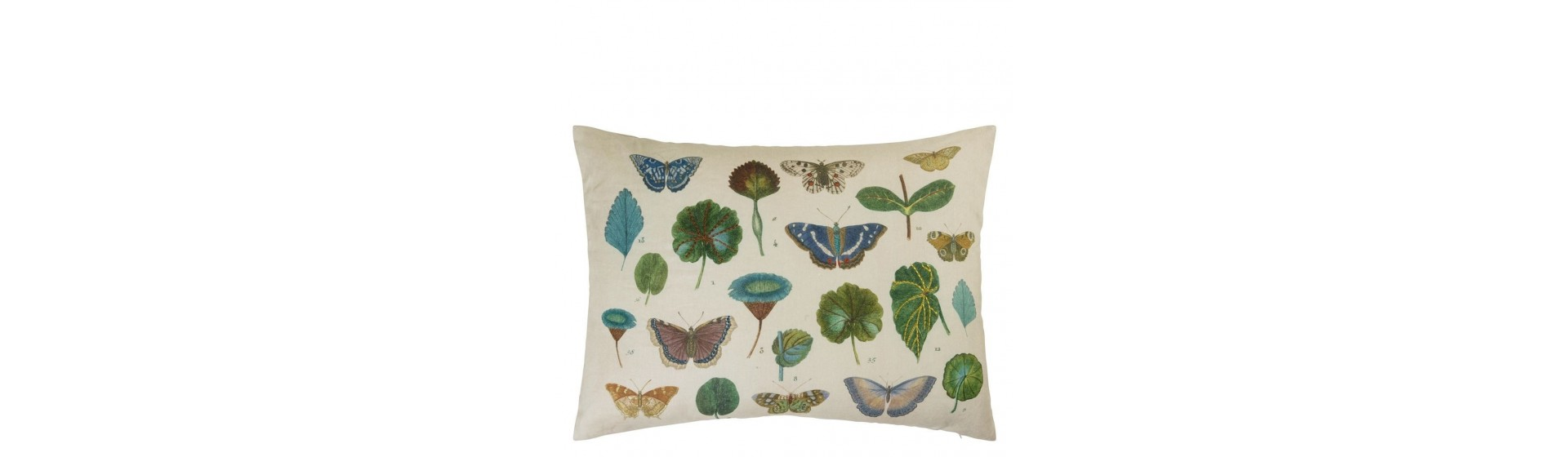A LEAF AND BUTTERFLY STUDY Cojines