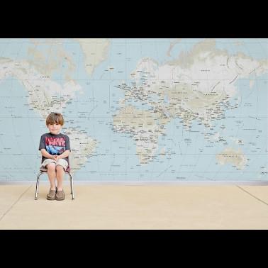 Papel Pintado con estilo Botánico modelo Paravent des amandiers de la marca Coordonné